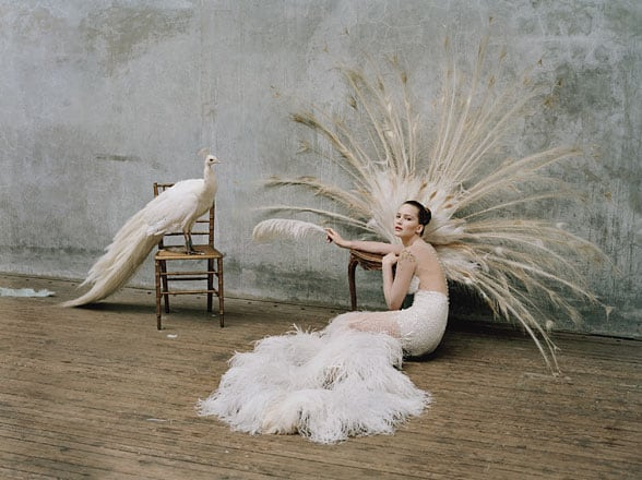 53f14 jennifer lawrence tim walker w magazine 03