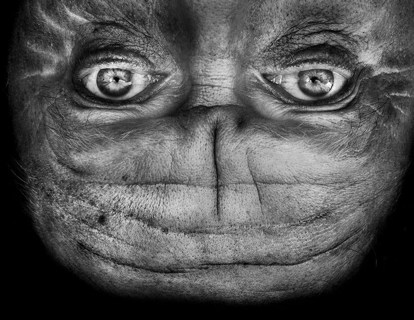 Alienation Upside Down Portraits Make People Look Like Aliens 2014 01