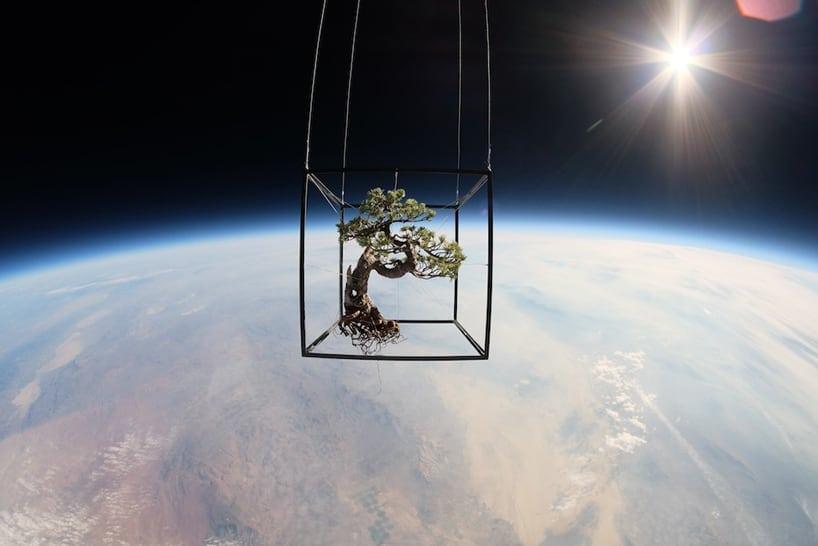 Azuma Makoto sends flowers into space designboom01