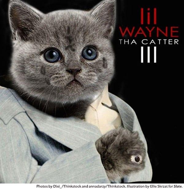 Cat Rap HipHop Covers 01