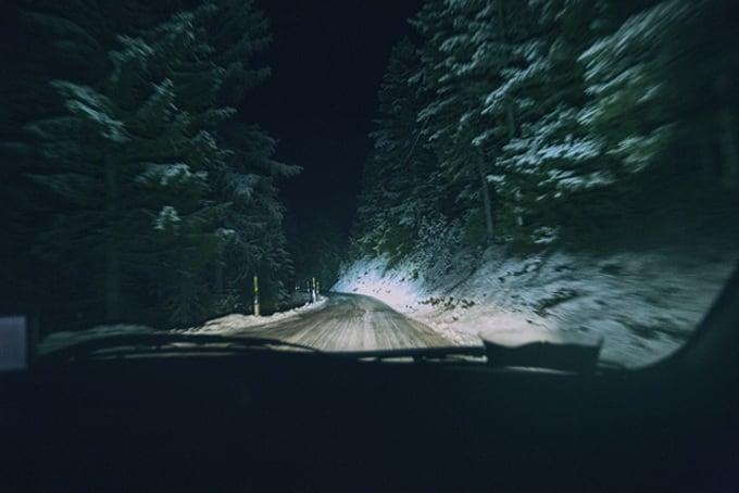 Into The Wild13