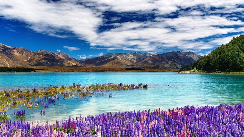 Lake Tekapo Amazing