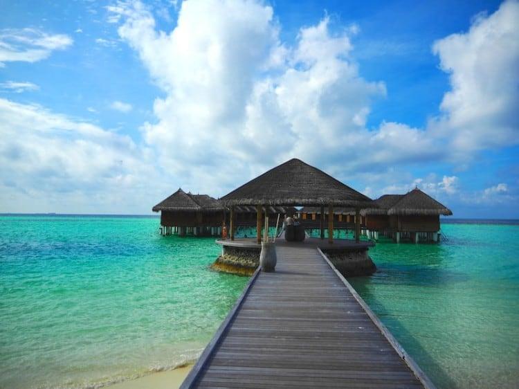 Maafushivaru maldives WHUDAT 07