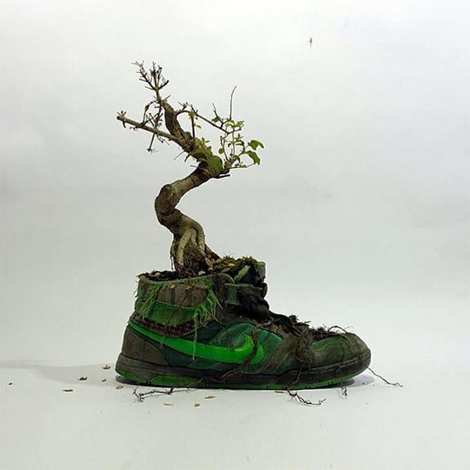 Mr Plant00