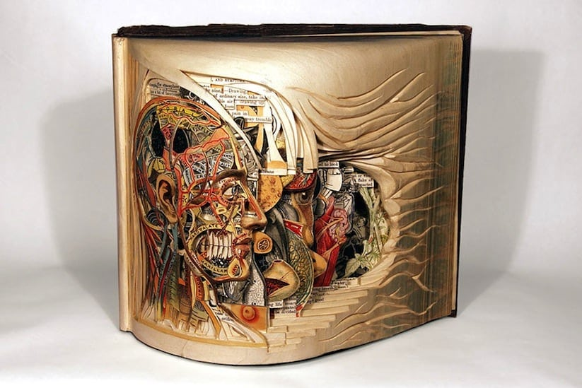 The Book Surgeon Incredible Book Sculptures by Brian Dettmer 2014 01