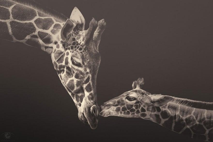 africa souls zoo photography manuela kulpa 1