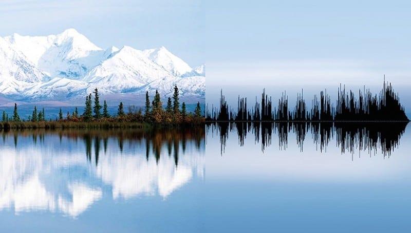 anna marinenko nature sound waves 01