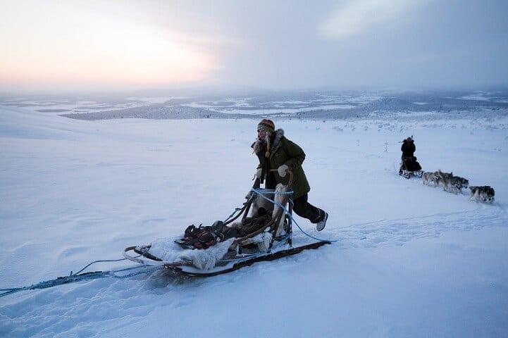 brice portolano arctic love fy 2