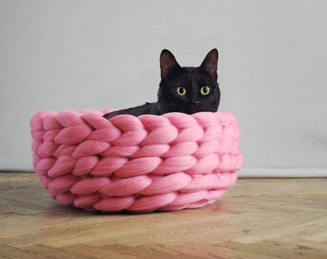 chunky knits pets ohhio anna mo freeyork 1
