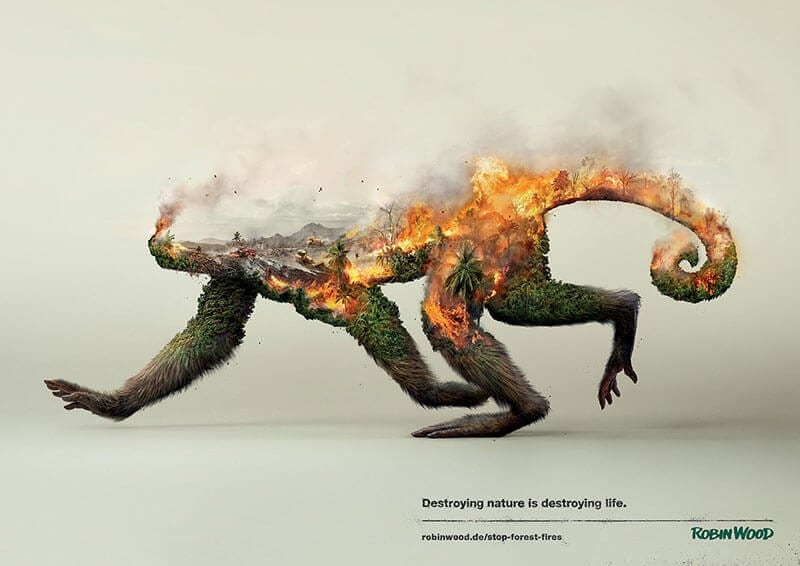 destroying life by photoby fy 7