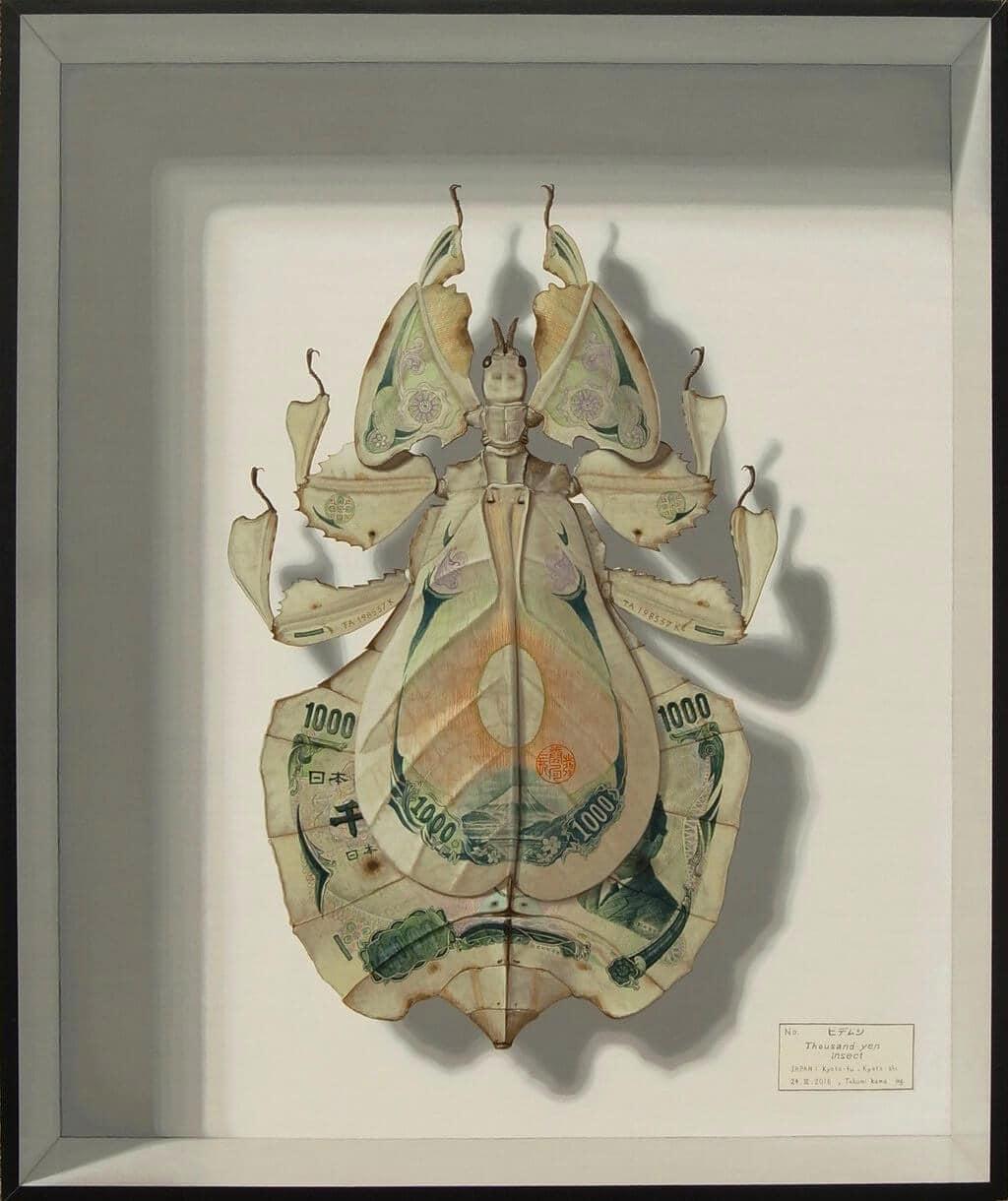insects takumi kama 9