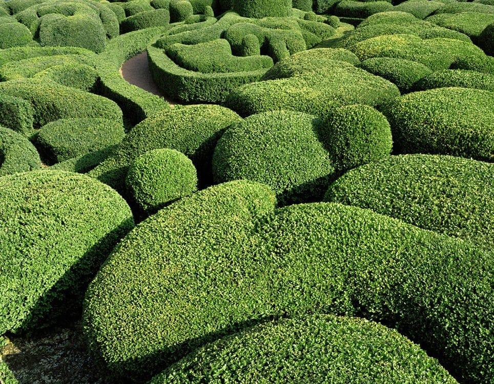 marqueyssac topiary gardens philippe jarrigeon 8