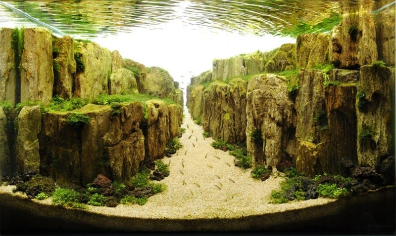 underwater art aquascaping 10