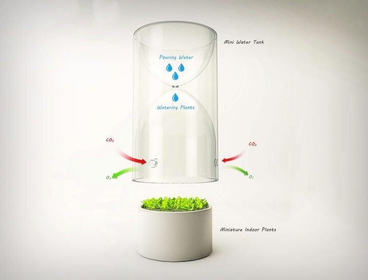 xindong che lives glass freeyork 2