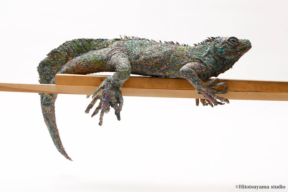 animals-chie-hitotsuyama-5