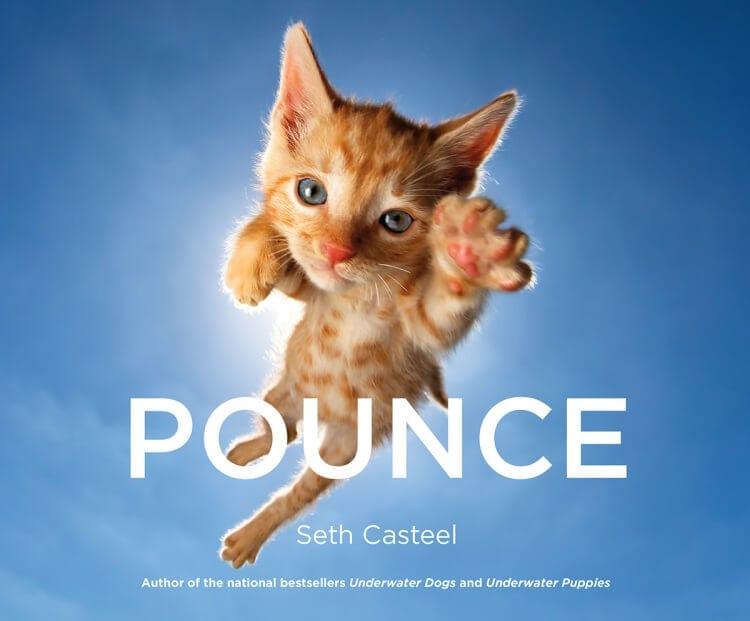 seth-casteel-pounce-7