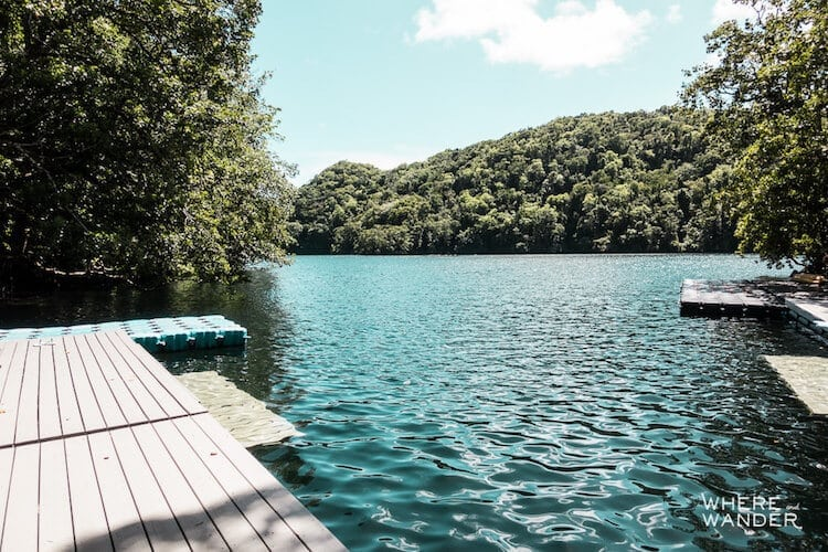 jellyfish-lake-kien-lam-4