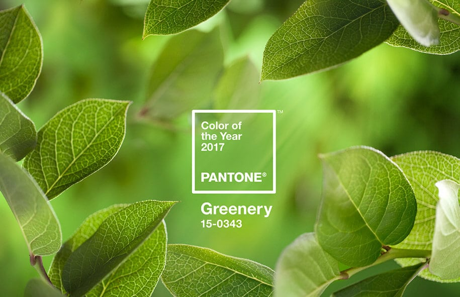 pantone color of the year 2017 6