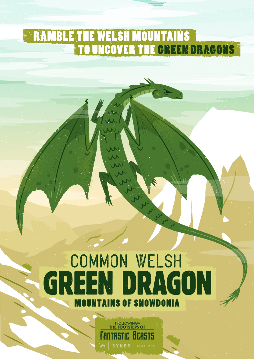 Fantastic Beasts Travel Posters Green Dragon