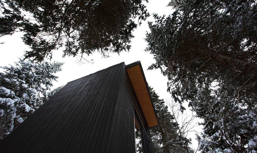 black cozy cabin ontario forest 4