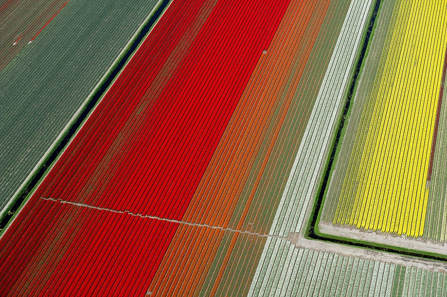 flower fields aerial photography netherlands normann szkop 11