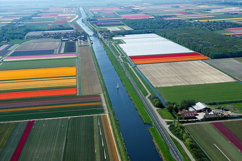 flower fields aerial photography netherlands normann szkop 20