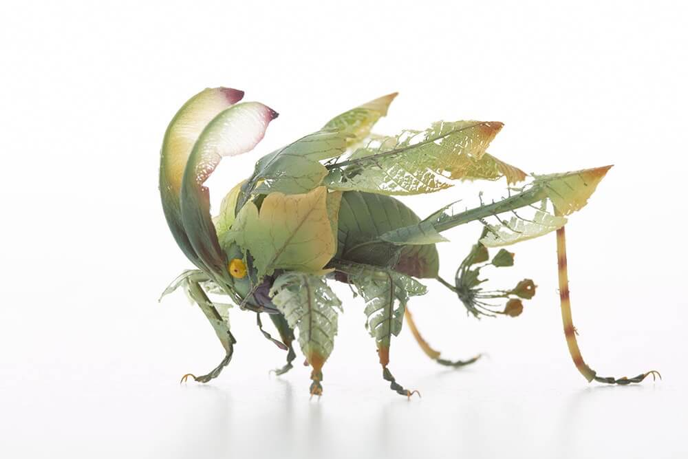 insects by hiroshi shinno 11