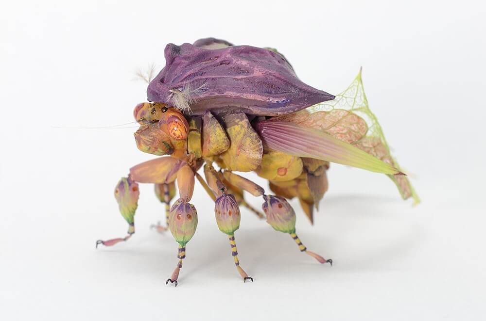 insects by hiroshi shinno 6