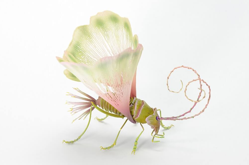 insects by hiroshi shinno 9