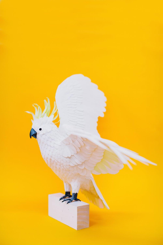 paper bird sculptures diana beltran herrera 8