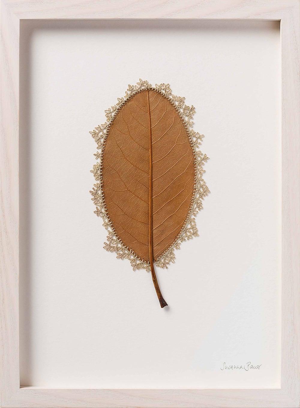 dried leaves usanna bauer 13