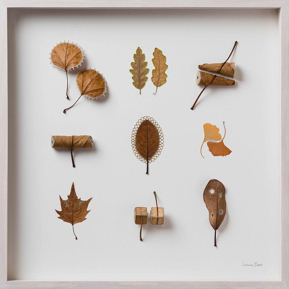 dried leaves usanna bauer 4