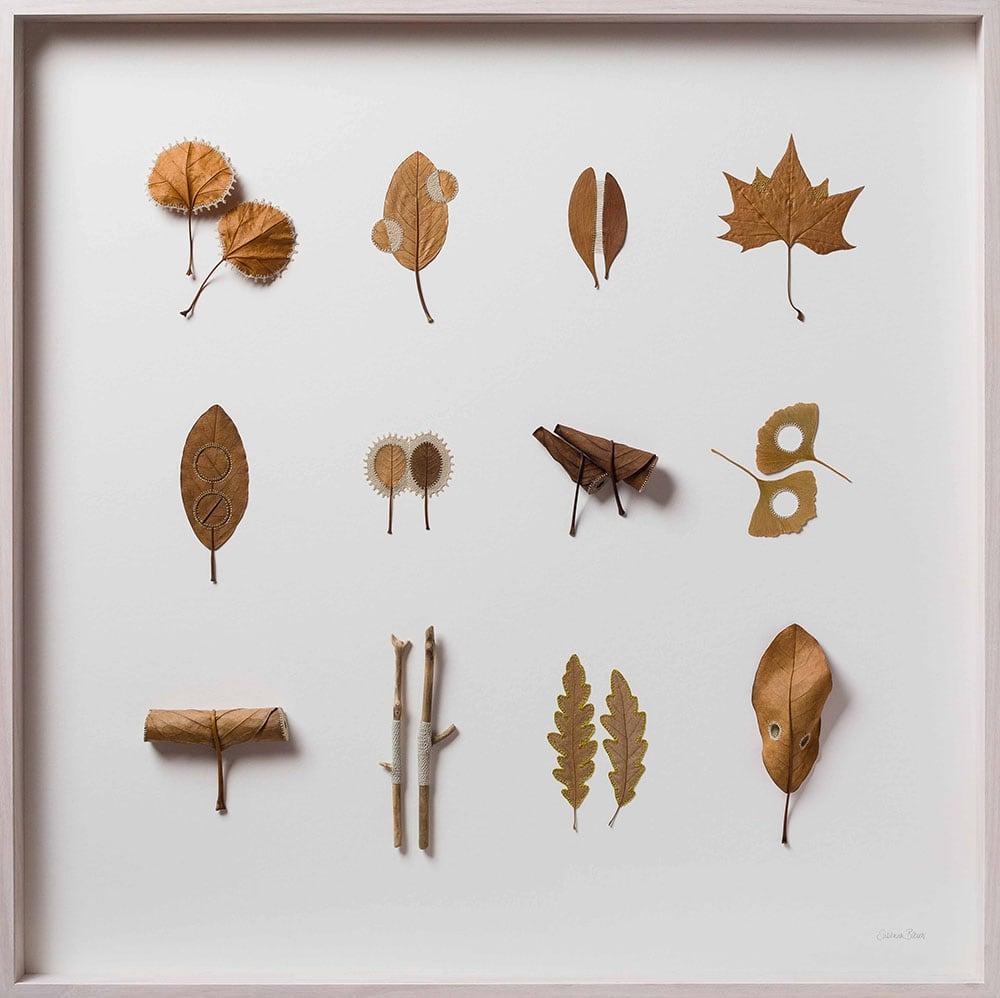 dried leaves usanna bauer 7