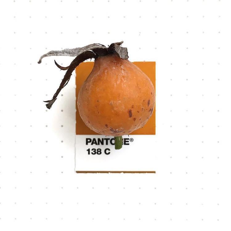 pantone color match inka mathew 21