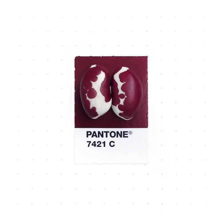pantone color match inka mathew 23