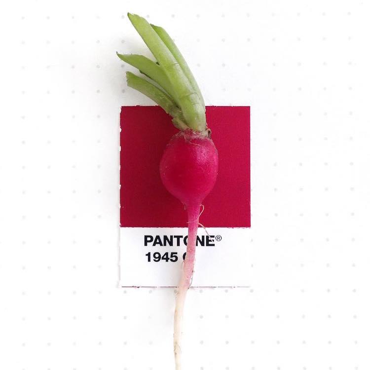 pantone color match inka mathew 28