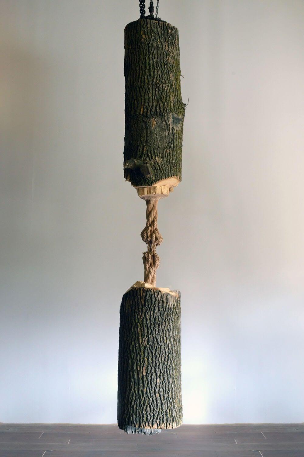 maskull lasserre wood fy 1
