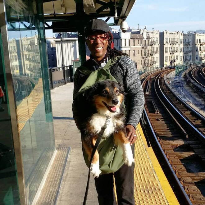 nyc subway banns dogs fy 8