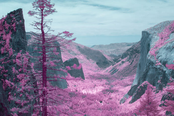 yosemite infrared photography fy 11