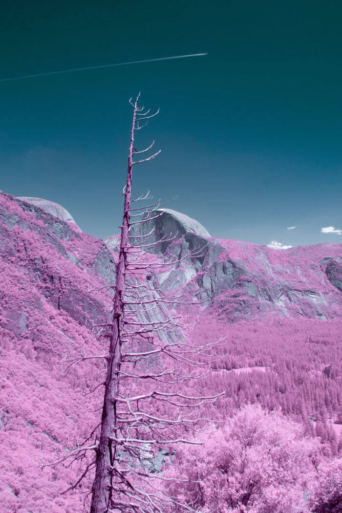 yosemite infrared photography fy 13