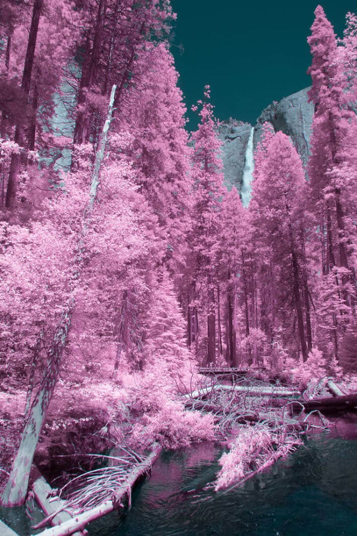 yosemite infrared photography fy 6