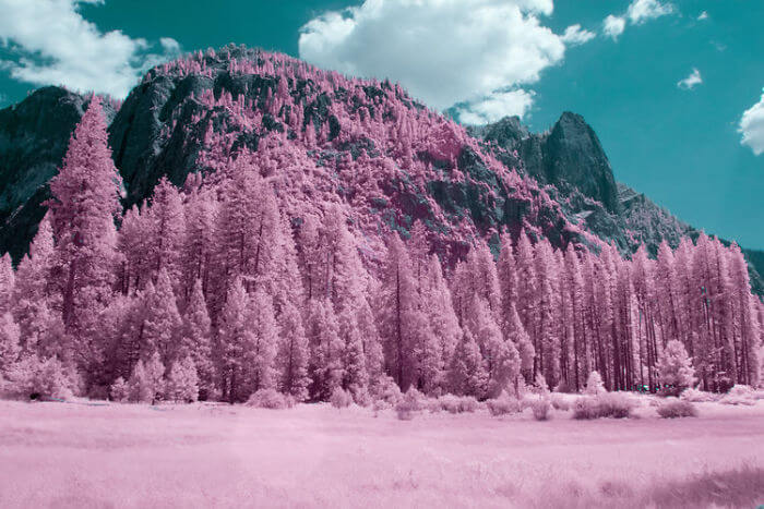 yosemite infrared photography fy 8