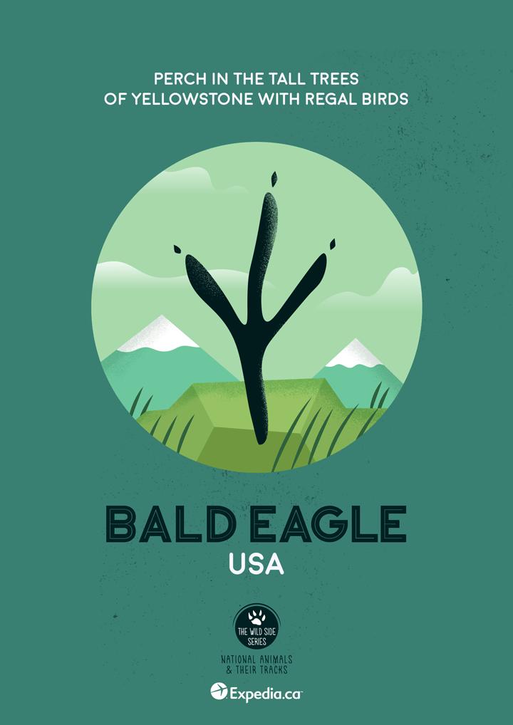 WildSideSeries 07 Eagle