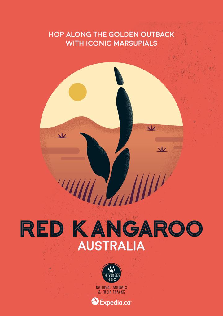 WildSideSeries 10 Kangaroo