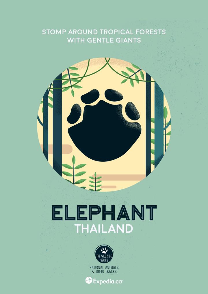 WildSideSeries 11 Elephant