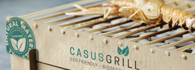 casusgrill sustainable disposable grill fy 9