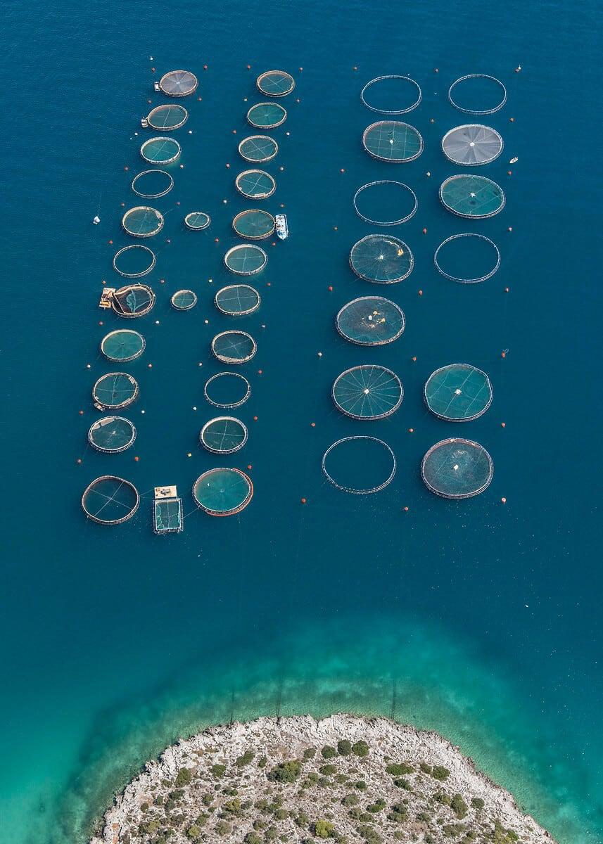 fish farms bernhard lang fy 5