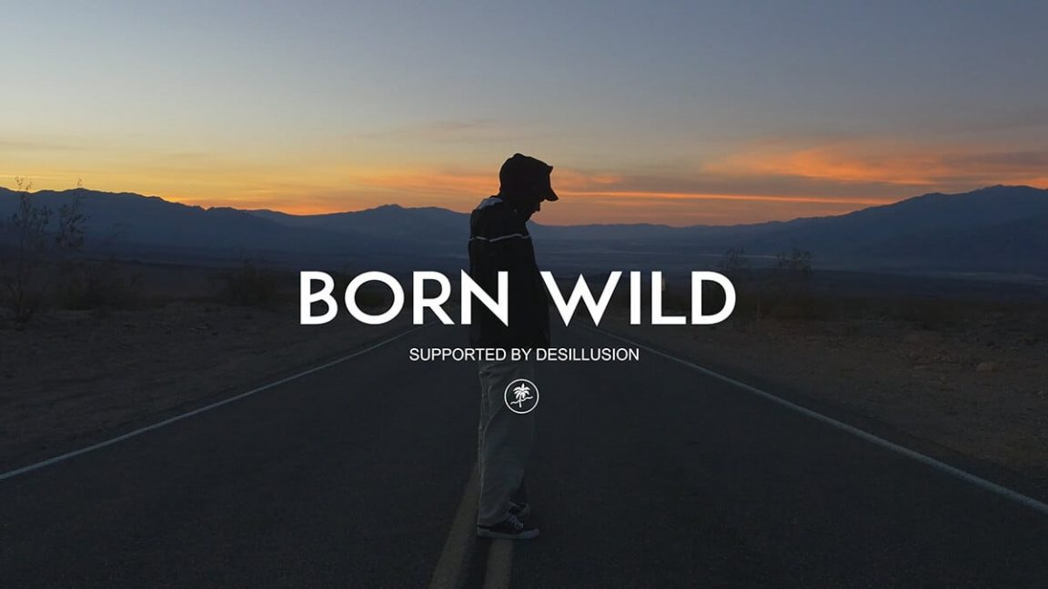 borb wild freeyork 3