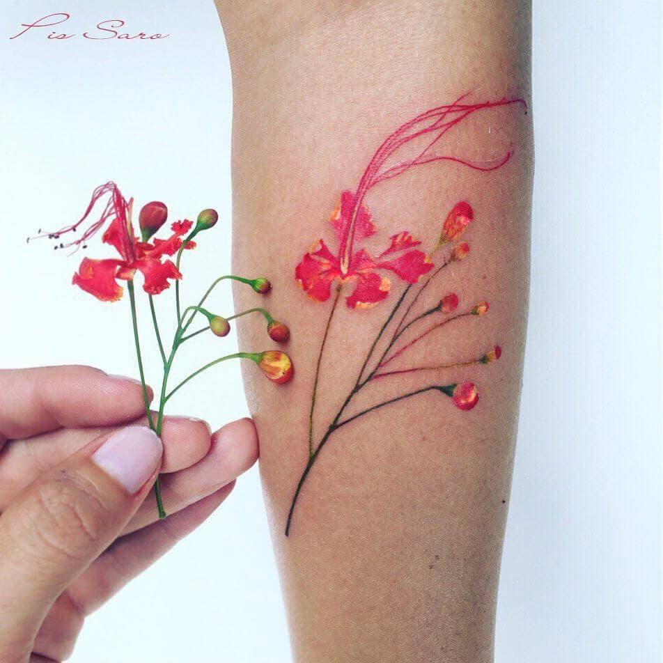 botanical tattoos pis saro freeyork 5