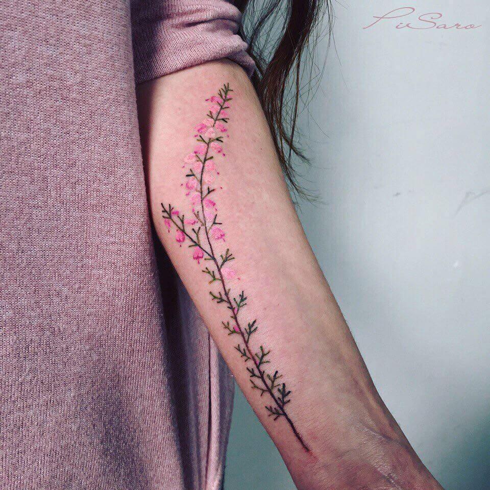 botanical tattoos pis saro freeyork 7